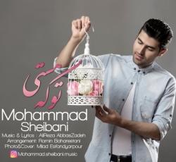 دانلود آهنگ جدید محمد شیبانی  تو که هستی با کیفیت بالا