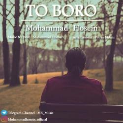 دانلود آهنگ جدید محمد حسین  تو برو با کیفیت بالا