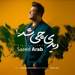 دانلود آهنگ جدید سعید عرب  دیدی چی شد با کیفیت بالا