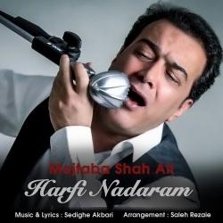 دانلود آهنگ جدید مجتبی شاه علی  حرفی ندارم با کیفیت بالا