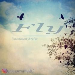 دانلود آهنگ جدید Unknown Artist  Fly با کیفیت بالا