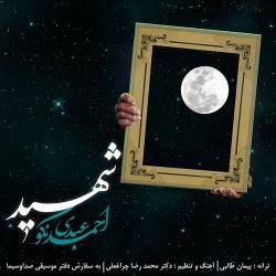 دانلود آهنگ جدید احمد عبدی نکو  شهید با کیفیت بالا