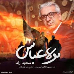 دانلود آهنگ جدید سعید آرام  مولا عباس با کیفیت بالا