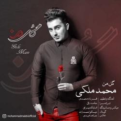 دانلود آهنگ جدید محمد ملکی  گل من با کیفیت بالا