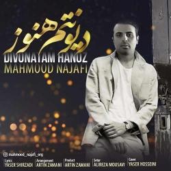 دانلود آهنگ جدید محمود نجفی  دیونتم هنوز با کیفیت بالا
