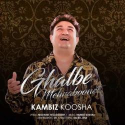 دانلود آهنگ جدید کامبیز کوشا  قلب مهربونت با کیفیت بالا