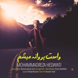 دانلود آهنگ جدید محمدرضا هدایتی  واست پروانه میشم با کیفیت بالا