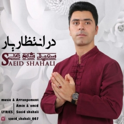 دانلود آهنگ جدید سعید شاه علی  در انتظار یار با کیفیت بالا