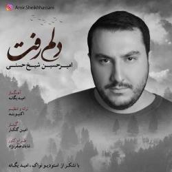 دانلود آهنگ جدید امیرحسین شیخ حسنی  دلم رفت با کیفیت بالا