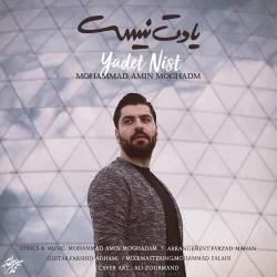 دانلود آهنگ جدید محمد امین مقدم  یادت نیست با کیفیت بالا