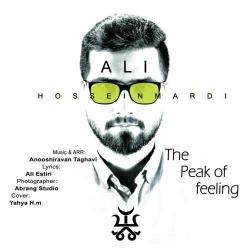 دانلود آهنگ جدید علی حسینمردی  قله احساس با کیفیت بالا