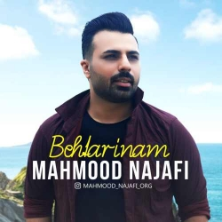 دانلود آهنگ جدید محمود نجفی  بهترینم با کیفیت بالا