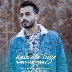 دانلود آهنگ جدید سعید علیزاده  کابوس تازه با کیفیت بالا