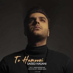 دانلود آهنگ جدید سعید حسنی  تو همونی با کیفیت بالا