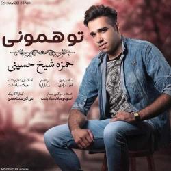 دانلود آهنگ جدید حمزه شیخ حسینی  تو همونی با کیفیت بالا