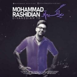 دانلود آهنگ جدید محمد رشیدیان  دیوانگیم تو با کیفیت بالا