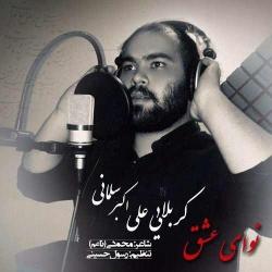 دانلود آهنگ جدید علی اکبر سلمانی  نوای عشق با کیفیت بالا