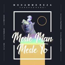 دانلود آهنگ جدید محمدرضا فرشاد هنگی مثل من مثل تو با کیفیت بالا