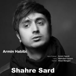 دانلود آهنگ جدید آرمین حبیبی بنام شهر سرد با متن ترانه